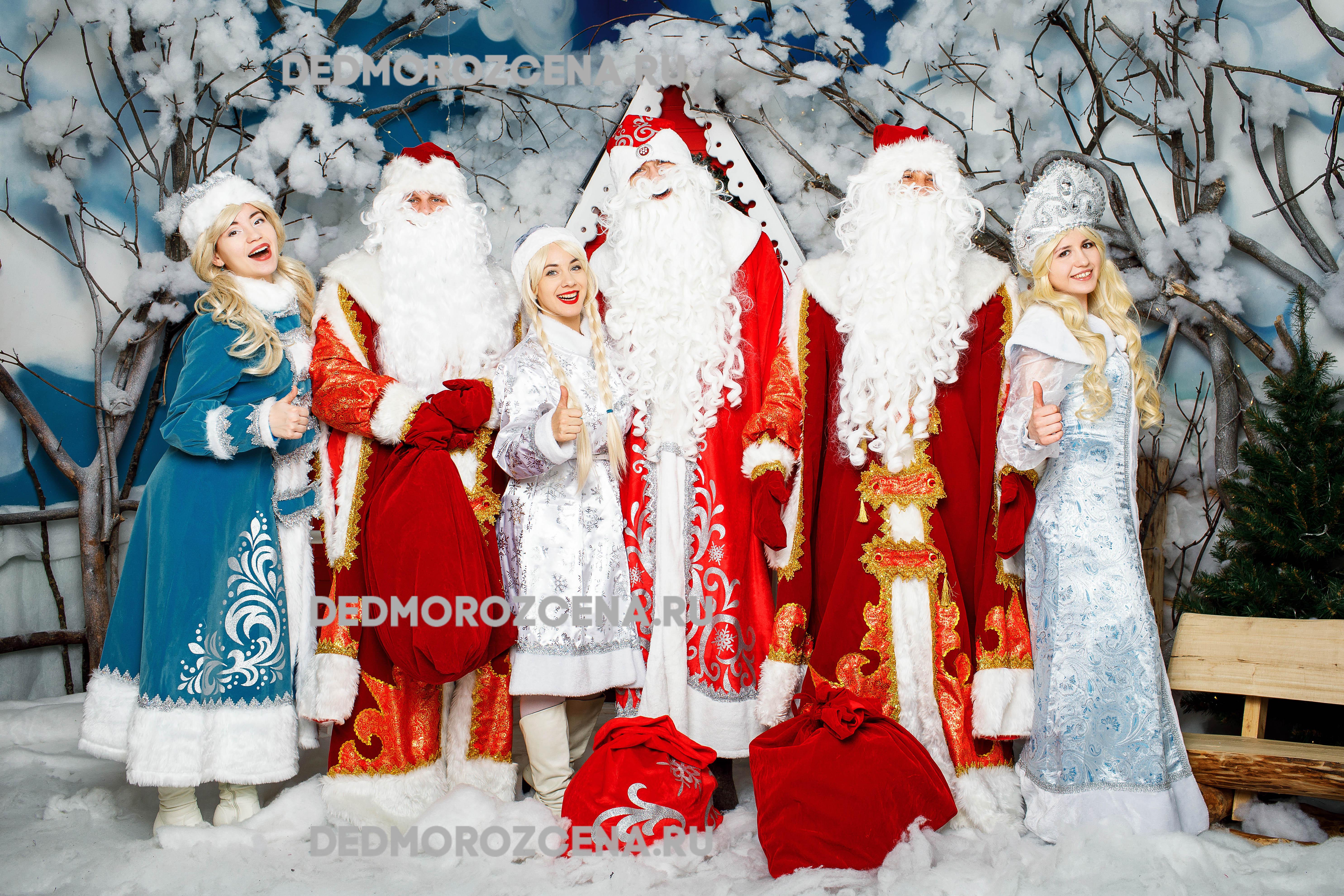 Дед мороз на дом томск цены